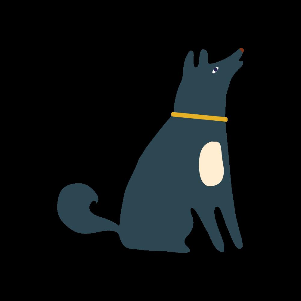 Digitall360 Dog